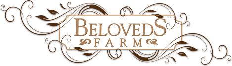 Beloveds Farm